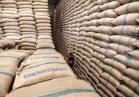 ایران واردکننده برنج اروگوئه
